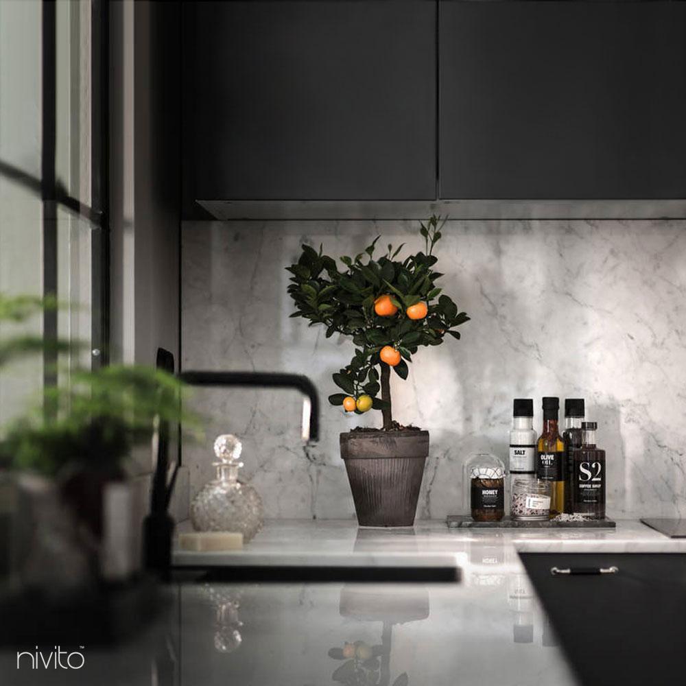 Black kitchen water tap